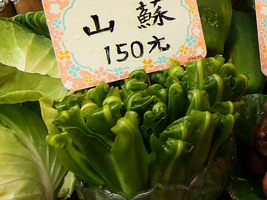山蘇(オオタニワタリ)
