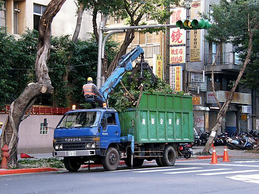 街路樹清掃中